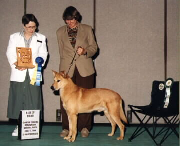 The Honorable Nancy Fishinger, U.K.C. Judge; Joyce A. Maley, 